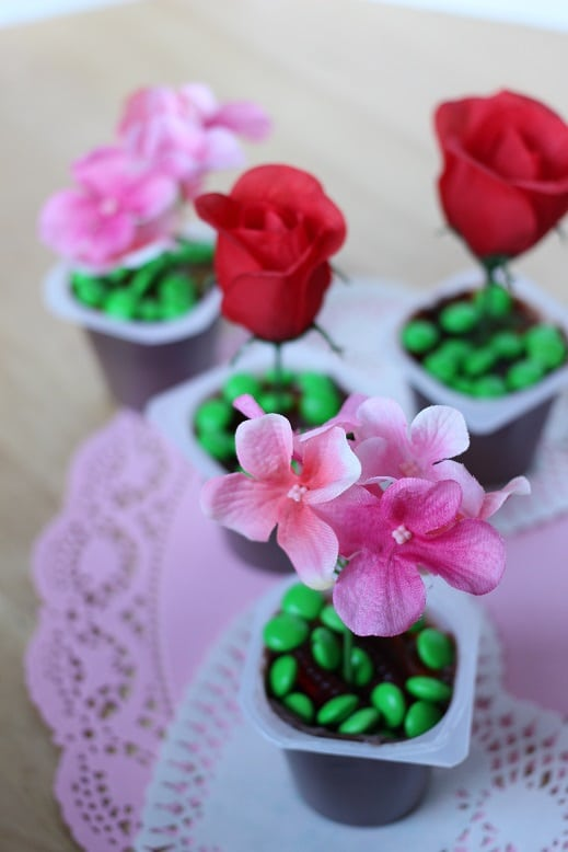 Valentine's Day Pudding Cups