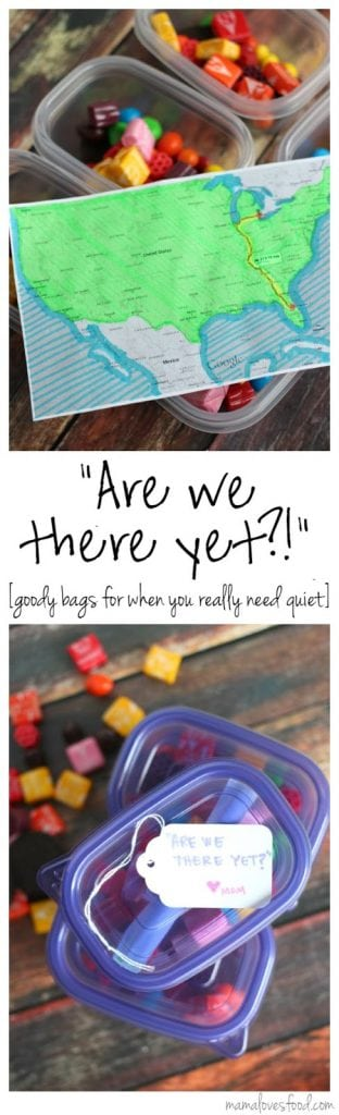 """Are We There Yet?!"" Road Trip Emergency Packs!"
