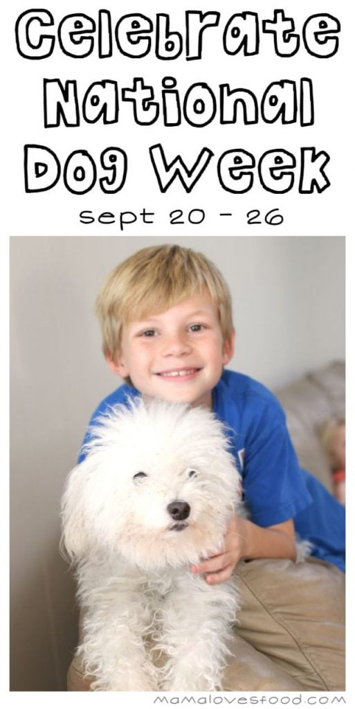 Celebrate National Dog Week and Win a Gift Bag for Your Pup!