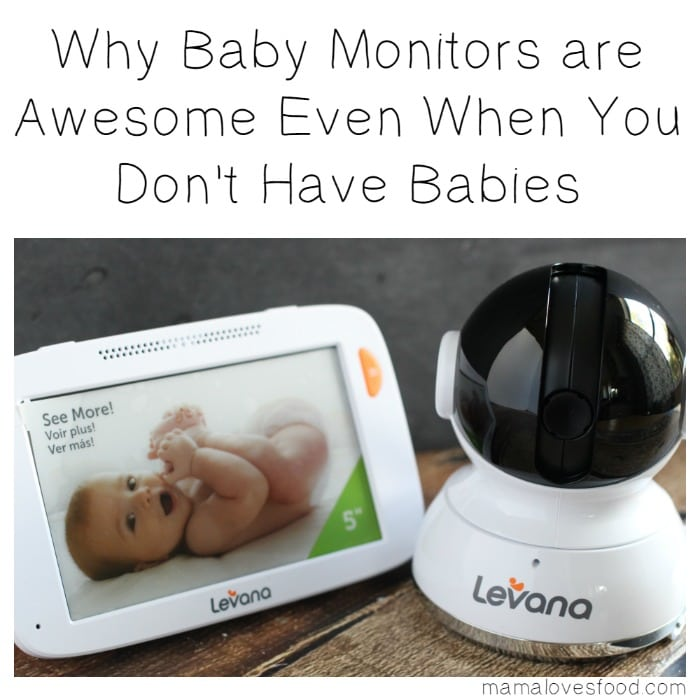 why baby monitors are awesome even when you don 39 t have babies mama loves food. Black Bedroom Furniture Sets. Home Design Ideas