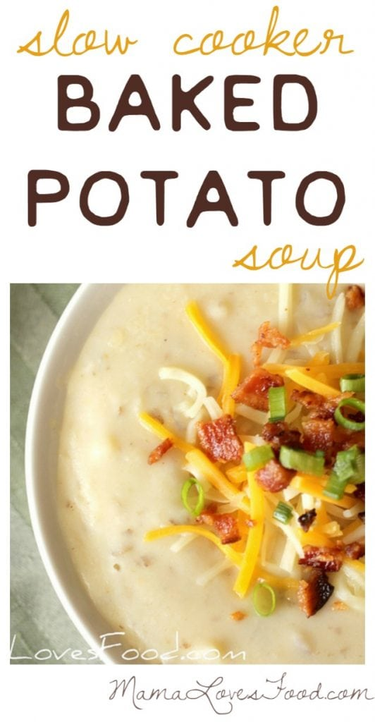 Slow Cooker Baked Potato Soup Recipe for the Crock Pot