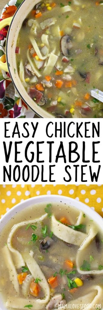 EASY CHICKEN VEGETABLE NOODLE STEW