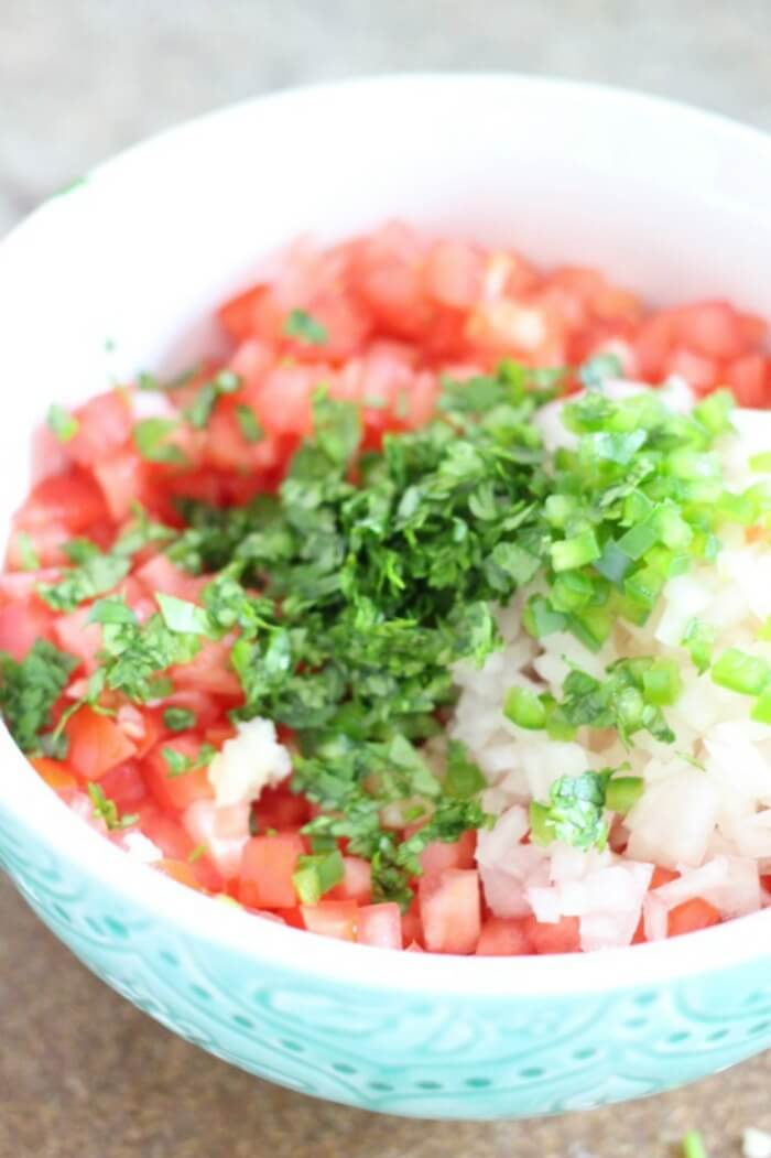 PICO DE GALLO RECIPES